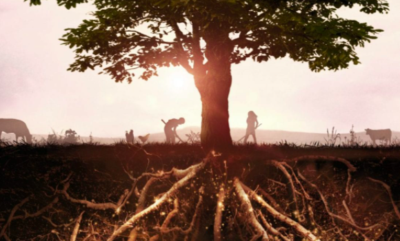 Un suolo fertile è un suolo vivo